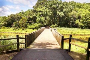 Parks On Kent Island Maryland